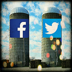Are Social Media Silos Costing You Business?